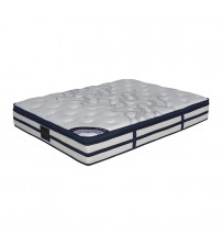 Natural Latex Pocket Spring Shine Queen Mattress