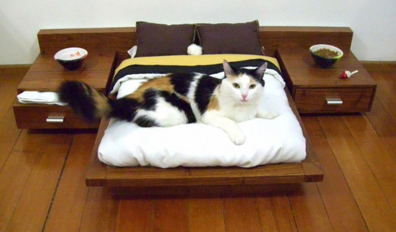 22 Awesome Furniture Design Ideas For Cat Lovers